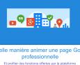 La page Google + pour les pros.